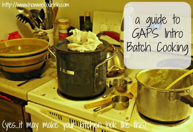 A Guide to GAPS Intro Diet Batch Cooking