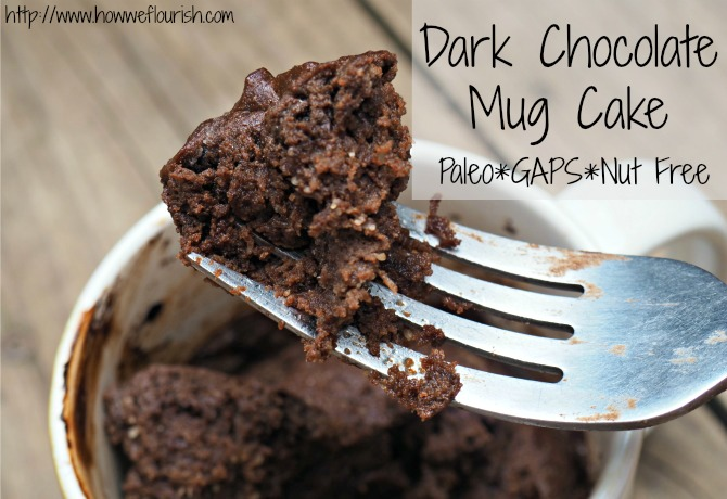 Dark Chocolate Mug Cake (GAPS, Paleo, Nut-Free)