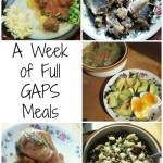 GAPS Diet Recipes